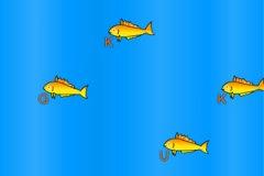 深海黄鱼打字母